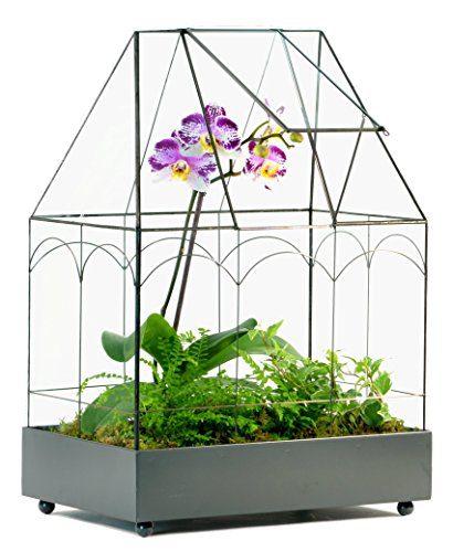 H Potter Glass Terrarium Wardian Case Succulent Planter Container