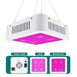 XECCON LED Grow Light 600W Full Spectrum Double Switch for Indoor Plants Veg