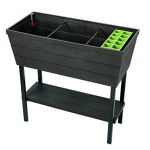 Keter Urban Bloomer 22.4 Gallon Raised Garden Bed with Self Watering Planter Box