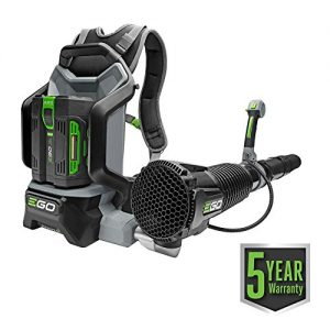 EGO Power+ 145 MPH 600 CFM Variable-Speed Turbo 56-Volt Lithium-Ion