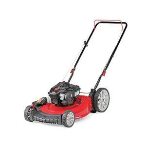 Troy-Bilt 21 in. 140cc OHV 2-in-1 Push Lawn Mower