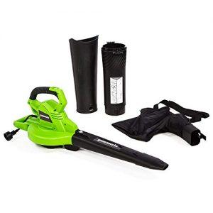 Greenworks 12 Amp Corded 2-Speed Leaf Blower/Vacuum