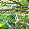 Mesoga Foot Extendable Tree Pruner, Cut and Hold Pruning Trimmer