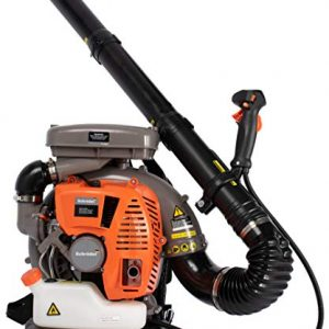 Schröder Germany Industrial Backpack Leaf Blower 5-Year Warranty Model