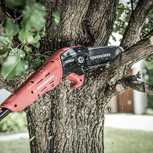 Powerworks XB 40V 8-Inch Cordless Polesaw, 2Ah Battery and Charger Included