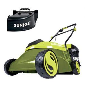 Sun Joe 14-Inch 28-Volt Cordless Push Lawn Mower, w/Rear Discharge Chute