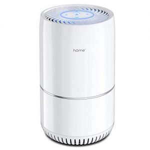 hOmeLabs Air Purifier for Home, Bedroom or Office - True HEPA H13 Filter to Remove Unwanted Particles from The Air
