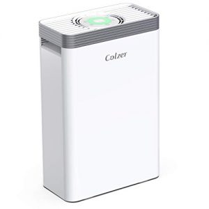 COLZER Air Purifier with True HEPA Air Filter, Air Purifier for Bedroom, for Spaces Up to 550 Sq Ft, Perfect for Home/Office with Composite Filter