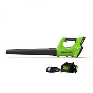 Greenworks 24V Cordless Jet Leaf Blower, 2.0Ah Battery and Charger Included