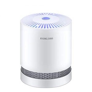 RIGOGLIOSO True HEPA Filter Air Purifier for Home Smokers Allergies and Pets Hair,Filtration System Cleaner Eliminators,Compact Desktop Purifiers Filtration with Night Light,Air Cleaner,GL2109