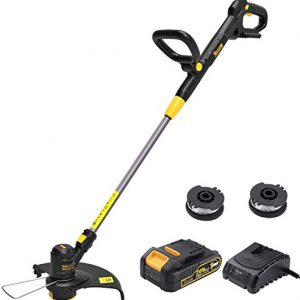 TECCPO String Trimmer, 20V 2Ah Lithium Ion, 2 26ft Nylon Thread Spool, Automatic Feed Spool, 12in Cutting Swath, Cordless Professional Grass Trimmer/Edger, Battery and Charger Include - TDLT02G