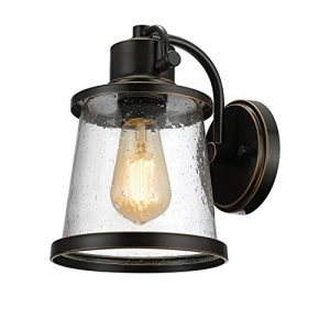 Globe Electric 44127 Charlie Outdoor Indoor Wall Sconce, LED Bulb Included, Oil Rubbed Bronze, Clear Seeded Glass Shade