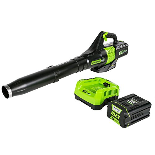 Greenworks 80V Jet Electric Leaf Blower, 2.5Ah Battery and Charger Included