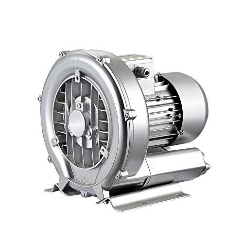 LNLEE Fish Pond Ring Blower for Aquirum, Regenerative Air Pump, Vortex Gas Pump, Side Channel Blower, Sewage Aeration (LN250W-110V60hz)