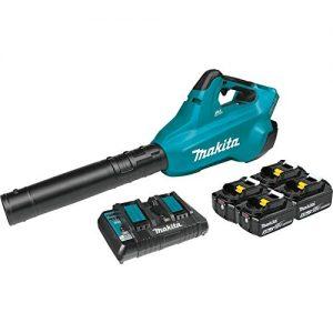 Makita 18V X2 (36V) Blower Kit with 4 Batteries
