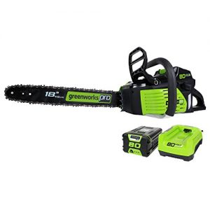 GreenWorks GCS80420 2000002 Cordless Chainsaw, 18-Inch