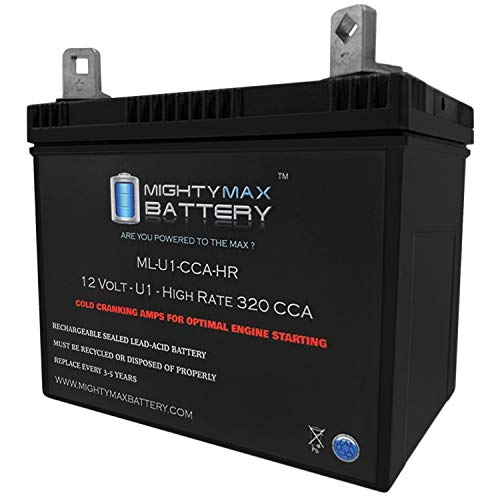 Mighty Max Battery 12V 320CCA Battery for Craftsman 25780 Lawn Tractor Mower