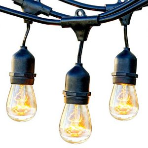 Brightech Ambience Pro - Waterproof Outdoor String Lights - Dimmable, Incandescent Edison Bulbs Create Bistro Ambience On Your Patio - Commercial Grade, Weatherproof - 48 Ft Market Lights