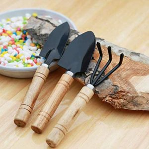MALARNEY 3 Piece Gardening Tool Set Mini Wood Handle Shovel Trowel Gardening Tools for Flowers Succulent Tranplanting (Large)
