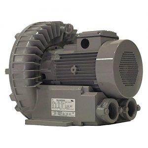 Regenerative Blower, 173 CFM, 230/460V