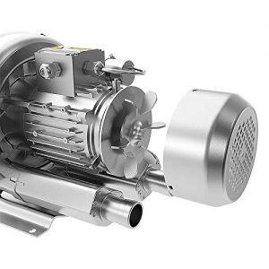 Shenzhen LNLEE Regenerative Blower,Side Channel Blower,Vortex Blower (LN370W-110V60Hz)