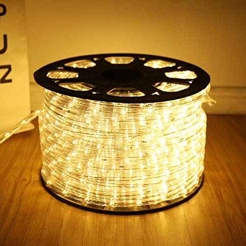 Upgraded 100 Feet Rope Lights,2-Wire Low Voltage LED Rope Lights Kit, Indoor Outdoor Rope Lighting for Background,Yard,Garden,Bridges Decoration with UL(Warm White)