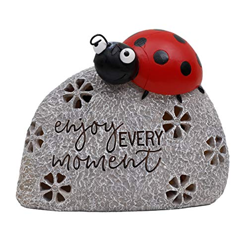 TERESA'S COLLECTIONS 5.1 Inch Ladybug On Stone Garden Statues, Enjoy Every Moment Fairy Garden Figurine with Solar Powered Garden Lights for Outdoor Patio Yard Decorations