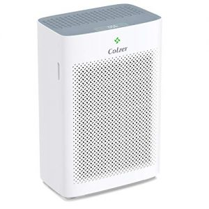 COLZER Air Purifier with True HEPA Air Filter, Air Cleaner for Home, Bedroom, Office, Large Room, for Spaces Up to 700 Sq Ft, with Composite Filter